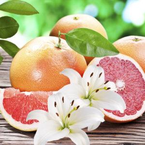 Fragrance Pamplemousse Lys